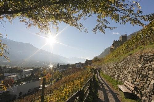 Suedtirol, Vinschgau, Naturns, Herbst 2010,