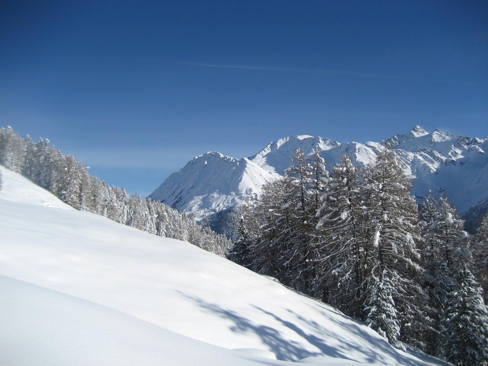 Schneeschuhwanderung2 2010