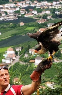 15 Dorf Tirol 52