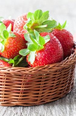 Bildquelle: &copy   Corinna Gissemann-stock.adobe.com