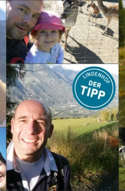 Collage Tipps