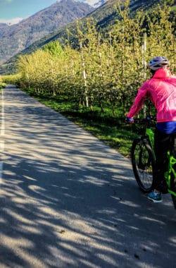 Ihre Bikeferien in Südtirol