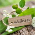 Wellness & Erholung pur im Belvita Hotel Lindenhof