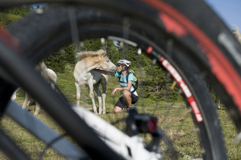 Naturns Mountainbike Naturnseralm - Lindenhof-Tour